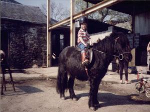 luke-pateince-horse